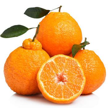 四川浦江丑柑大果5斤约8-13个水果