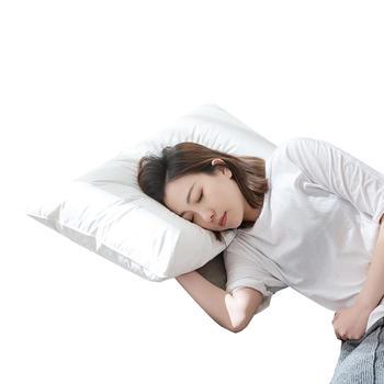 苏娜国际枕头 酒店枕芯一对装