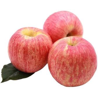 瑕疵苹果5斤红富士黄元帅混装