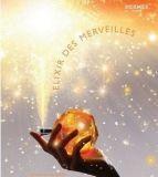 爱马仕(Hermes)Eau des Merveilles橘彩星光香水(2009限量版)